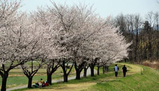 定年後の田舎暮らし移住先はどこがいい?移住者お勧め人気の岡山県の魅力をさぐる!!