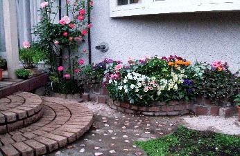ガーデニング初心者・失敗なし!育てやすい花選び・鉢・土選び・切り戻しと増やし方