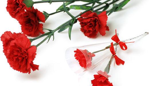母の日にカーネーションを贈るのはなぜ?母の日の由来とそれぞれの花言葉の意味
