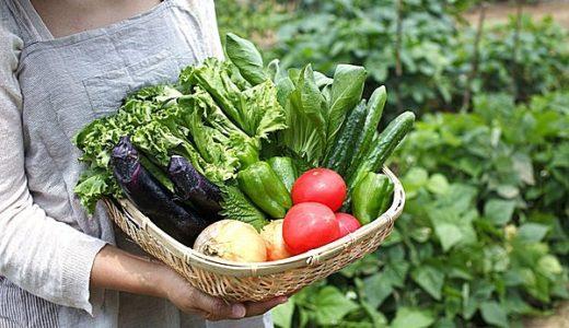 家庭菜園・庭の土づくりは簡単?初心者でも簡単に出来る方法を動画でチェック