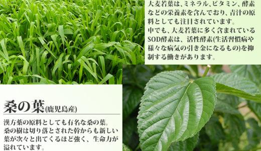 大麦若葉と桑の葉の栄養素・2つの青汁の効果・効能や効果的な飲み方とは?
