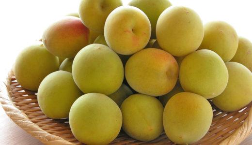 梅ジュースの効能や梅に含まれてる健康維持に欠かせない栄養素とは?