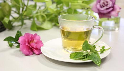 ハーブティーの効果と美味しい入れ方・飲みやすく育てやすい種類はどれ?