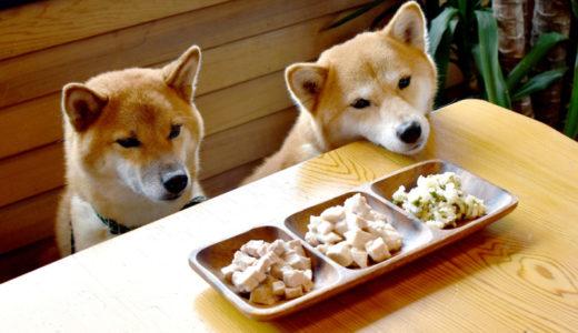 獣医さんのお勧めドッグフードはどれ?選ぶ時の3つのチェックポイント