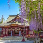 藤の花がきれいな関東・中部・東北地方の開運神社とご利益寺7選