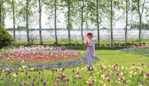 紫竹ガーデン女社長94歳で逝く!観光ガーデンが出来るまでの経緯